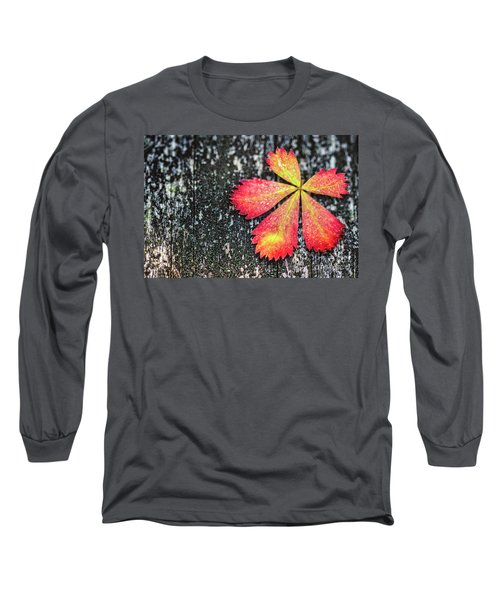 Impressions Of Autumn Long Sleeve T-Shirt