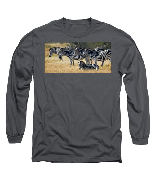 In Line Zebras Long Sleeve T-Shirt by Joe Bonita