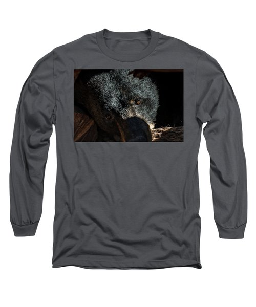 In The Den Long Sleeve T-Shirt by Phil Abrams