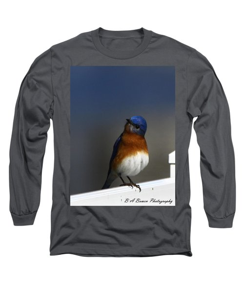 Inquisitive Bluebird Long Sleeve T-Shirt