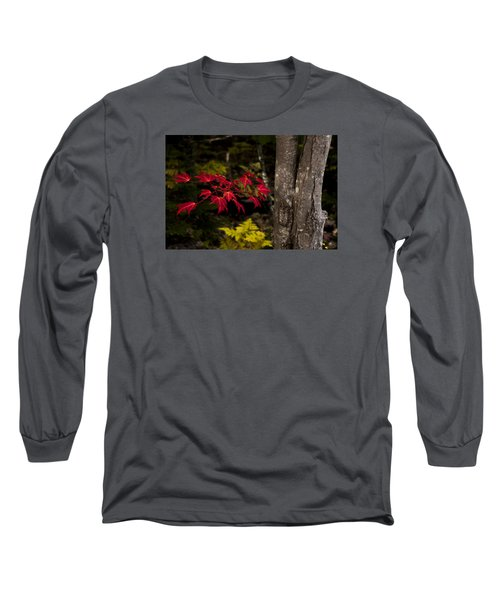 Long Sleeve T-Shirt featuring the photograph Intensity by Chad Dutson