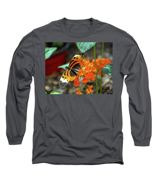 Ismenius Tiger Butterfly Long Sleeve T-Shirt