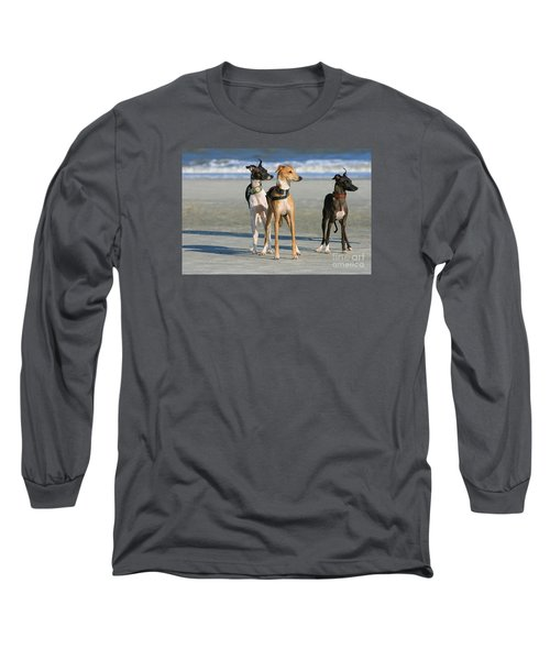 Italian Greyhounds On The Beach Long Sleeve T-Shirt