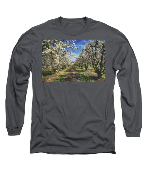It's A New Day Long Sleeve T-Shirt by Laurie Search