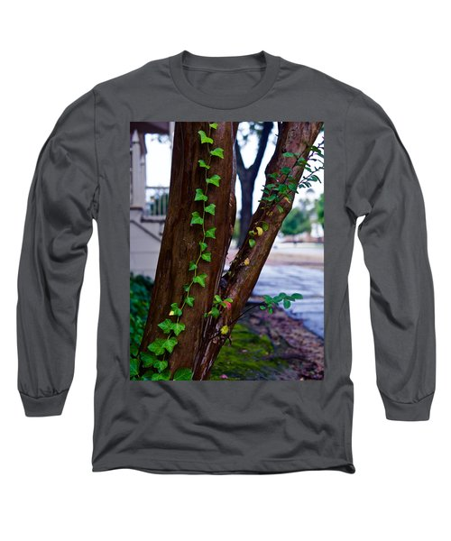 Ivy In Williamsburg Long Sleeve T-Shirt