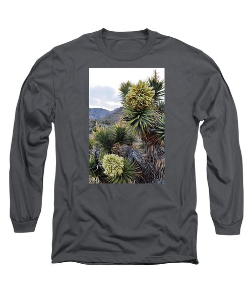 Joshua Tree Bloom Rainbow Mountain Long Sleeve T-Shirt