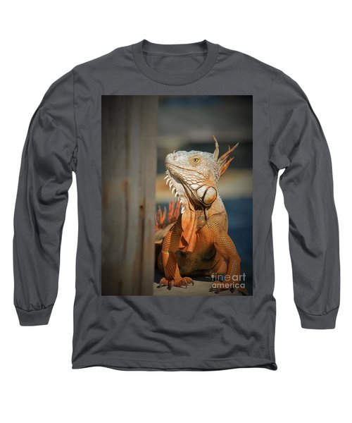 Long Sleeve T-Shirt featuring the photograph Just Around The Corner by Pamela Blizzard