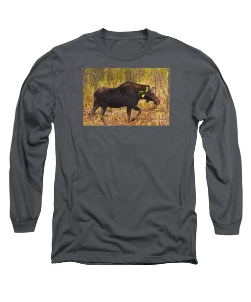 Long Sleeve T-Shirt featuring the photograph Just Passing Trhough by Sam Rosen