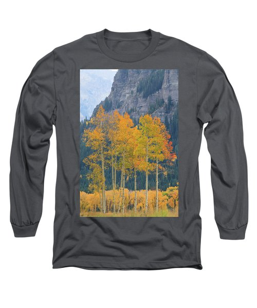 Just The Ten Of Us Long Sleeve T-Shirt by David Chandler