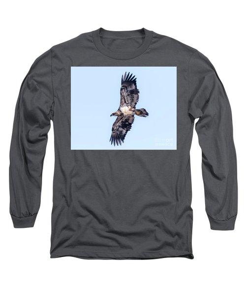 Long Sleeve T-Shirt featuring the photograph Juvenile Bald Eagle 2017 by Ricky L Jones