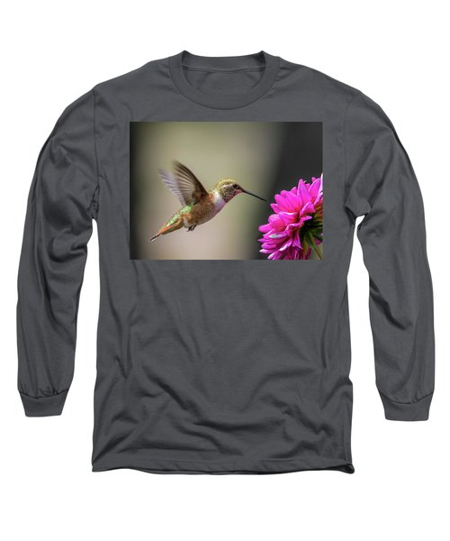 Juvenile Rufous Hummingbird And Pink Dahlia Long Sleeve T-Shirt
