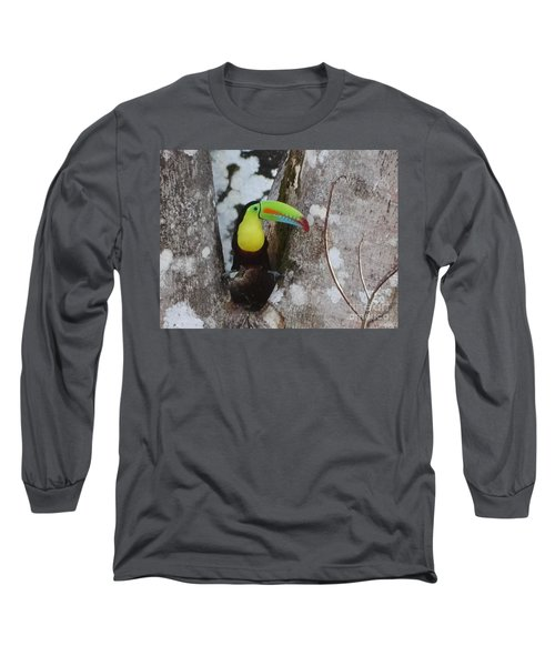 Keel-billed Toucan #2 Long Sleeve T-Shirt