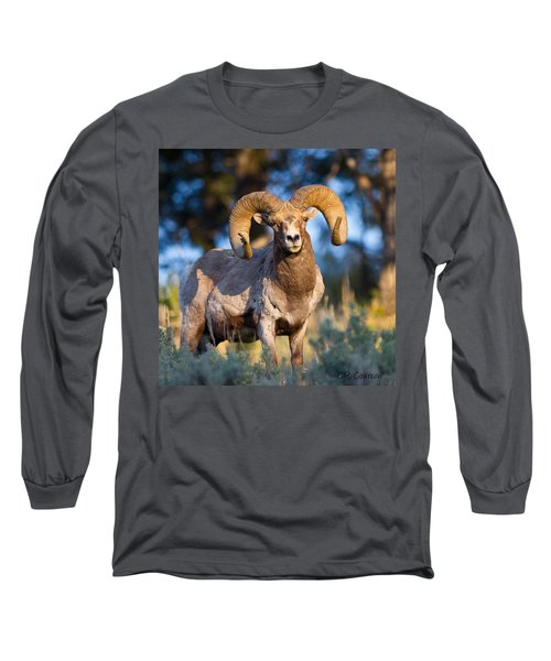 Keeping Watch Long Sleeve T-Shirt by CR  Courson