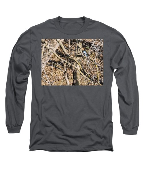 Kingfisher Hunting Long Sleeve T-Shirt by Edward Peterson