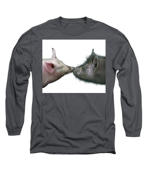 Kissing Pigs Long Sleeve T-Shirt by James Larkin