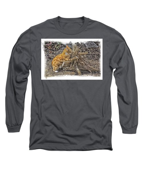 Kitty Thinking Of Mischievous Things Long Sleeve T-Shirt by Constantine Gregory