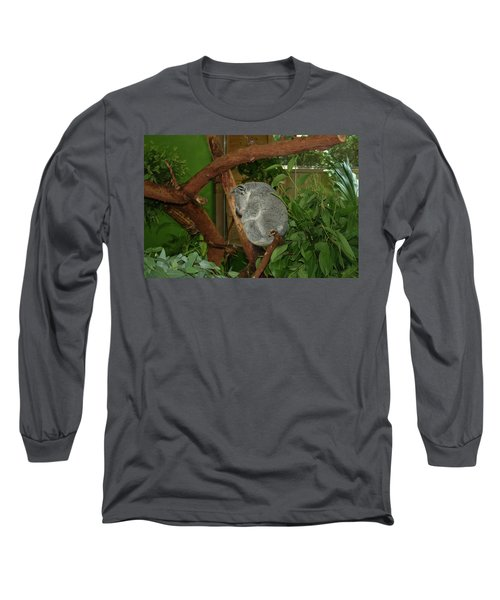 Long Sleeve T-Shirt featuring the photograph Koala by Cathy Harper
