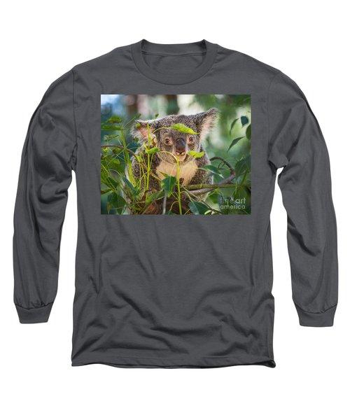 Koala Leaves Long Sleeve T-Shirt by Jamie Pham