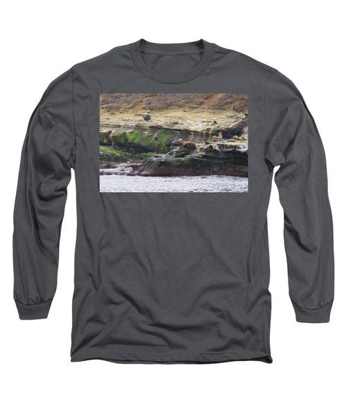 La Jolla Sea Lions Long Sleeve T-Shirt