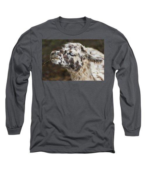 Lady Llama Long Sleeve T-Shirt