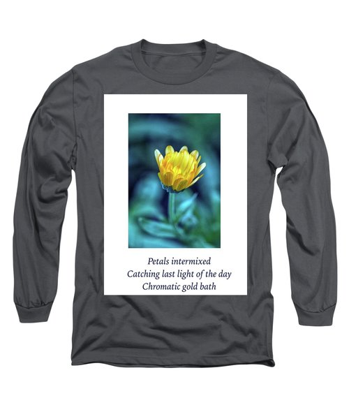 Last Light Haiku Long Sleeve T-Shirt by Constantine Gregory