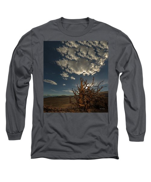 Late Afternoon In The Bristlecone Forest Long Sleeve T-Shirt