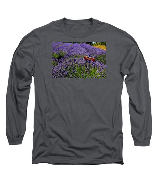 Long Sleeve T-Shirt featuring the photograph Lavender Bounty 2 by Tanya  Searcy