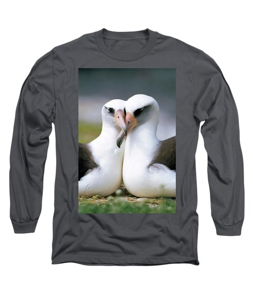 Laysan Albatross Phoebastria Long Sleeve T-Shirt