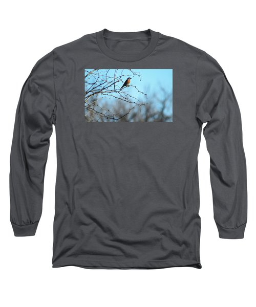 Lazuli Bunting Looks Out Long Sleeve T-Shirt