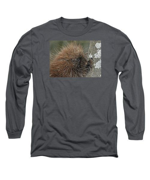 Long Sleeve T-Shirt featuring the photograph Learning To Climb by Glenn Gordon