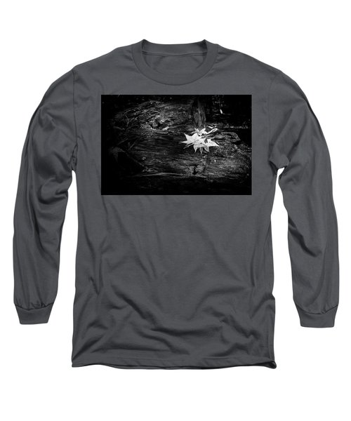 Leaves Long Sleeve T-Shirt by David Cote