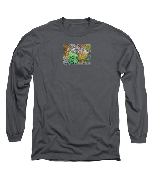 Lichen Rainbow   Long Sleeve T-Shirt by Michele Penner