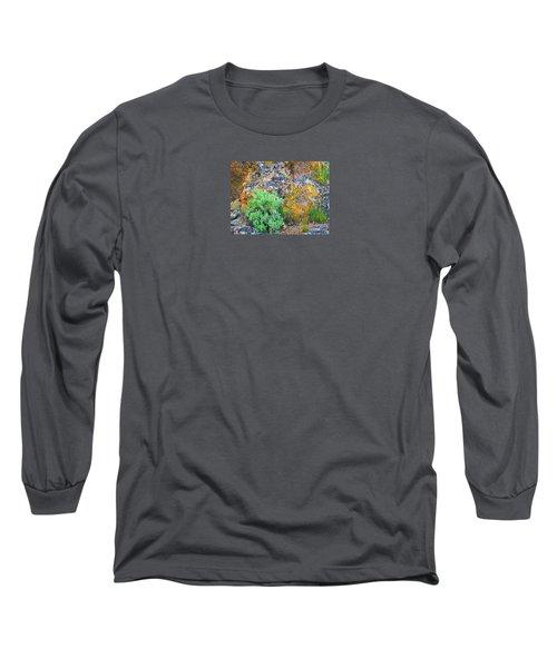Lichen Rainbow   Long Sleeve T-Shirt