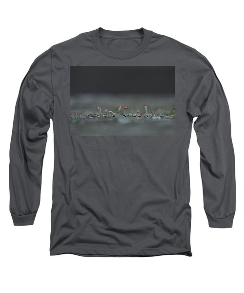 Lichen-scape Long Sleeve T-Shirt by JD Grimes