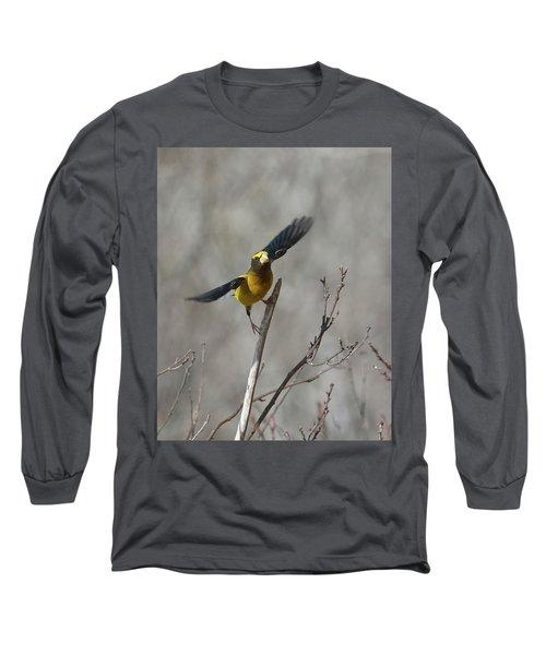 Liftoff-male Evening Grosbeak Long Sleeve T-Shirt