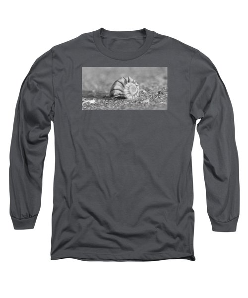 Lightning Whelk Long Sleeve T-Shirt by Sean Allen