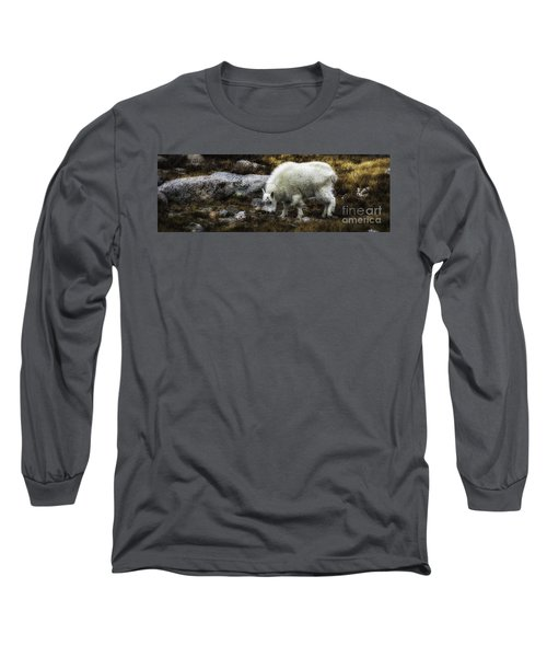 Lil' Kid Goat  Long Sleeve T-Shirt