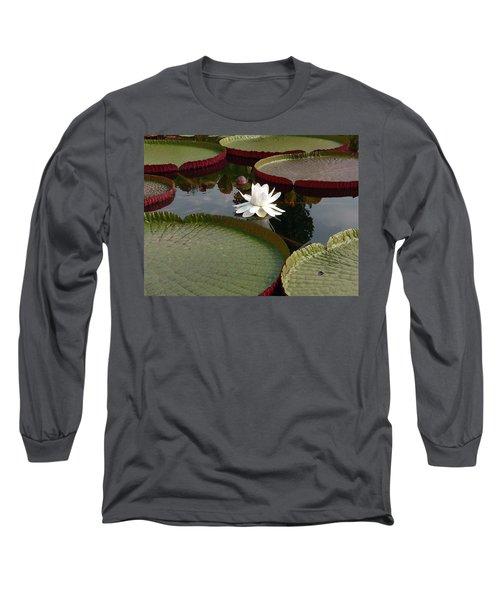Lily Long Sleeve T-Shirt by David Bearden