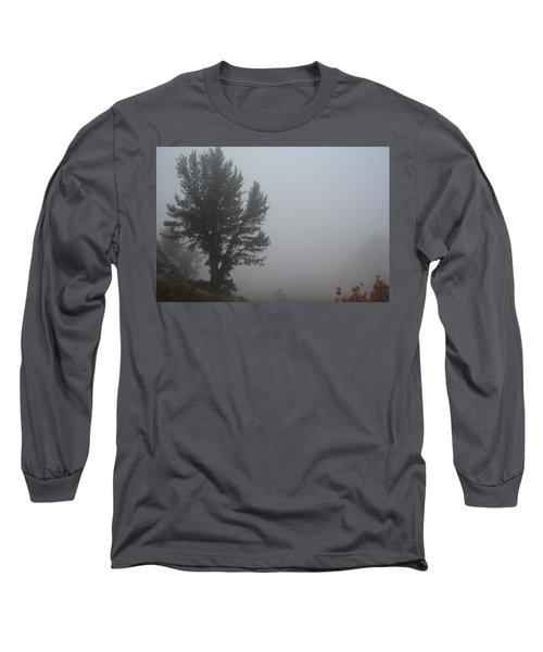 Long Sleeve T-Shirt featuring the photograph Limber Pine In Fog by Jenessa Rahn