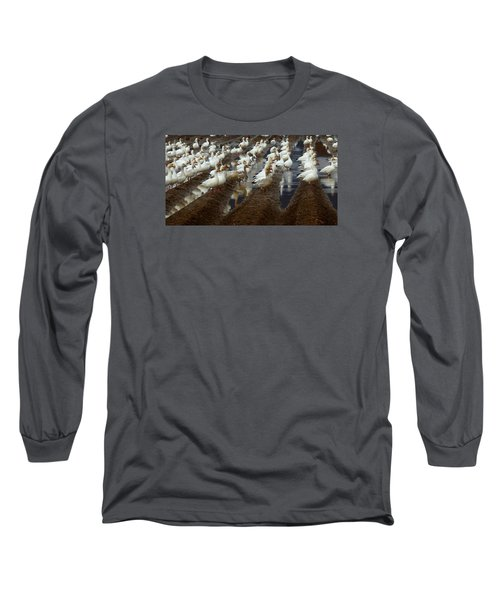 Lines Of Snowgeese Long Sleeve T-Shirt by Karen Molenaar Terrell