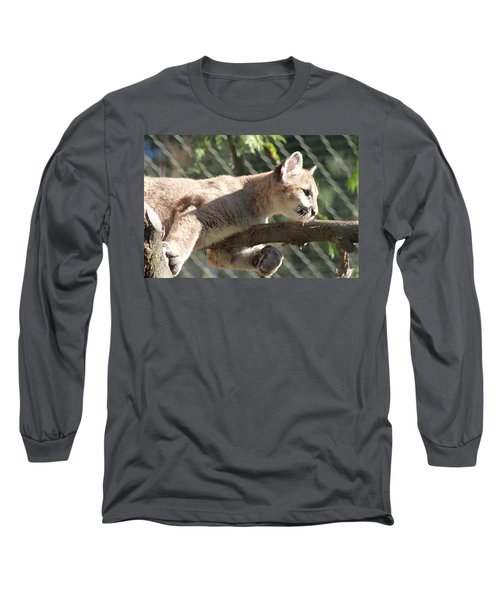 Long Sleeve T-Shirt featuring the photograph Lion Around by Laddie Halupa