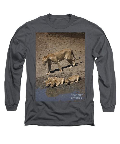 Lion Cubs And Mom Get A Drink Long Sleeve T-Shirt by Darcy Michaelchuk