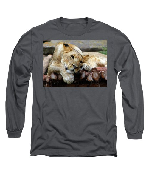 Lion Resting Long Sleeve T-Shirt by Inspirational Photo Creations Audrey Woods