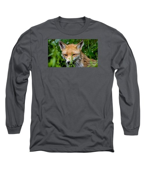 Little Baby Fox Long Sleeve T-Shirt
