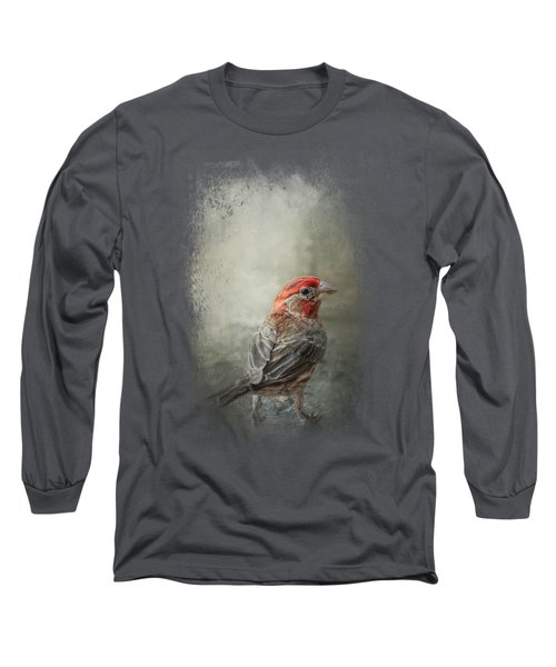 Little Red After The Storm Long Sleeve T-Shirt by Jai Johnson