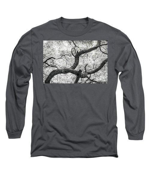 Live Oak Abstract 1 Long Sleeve T-Shirt