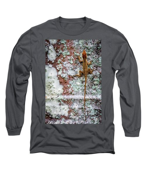 Lizard And Lichen On Brick Long Sleeve T-Shirt