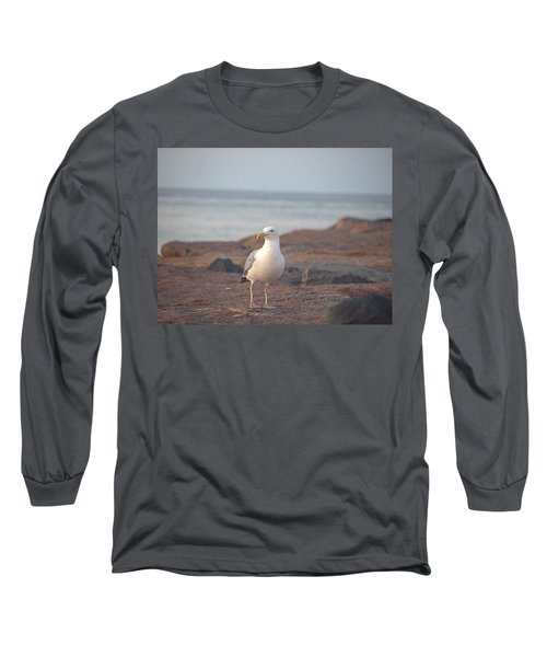Long Sleeve T-Shirt featuring the photograph Lone Gull by  Newwwman
