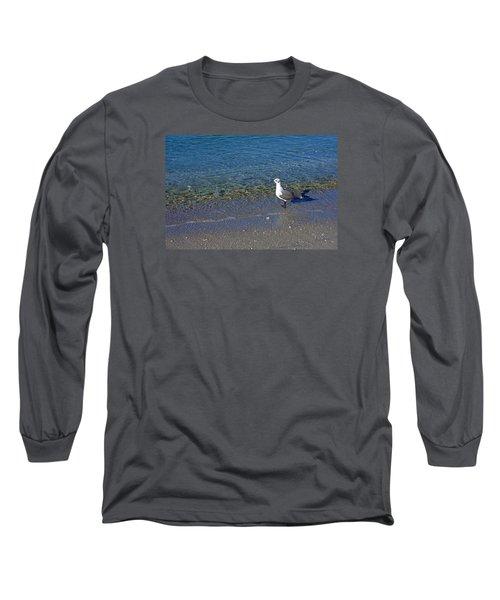 Lone Seagull At Miramar Beach In Naples Long Sleeve T-Shirt