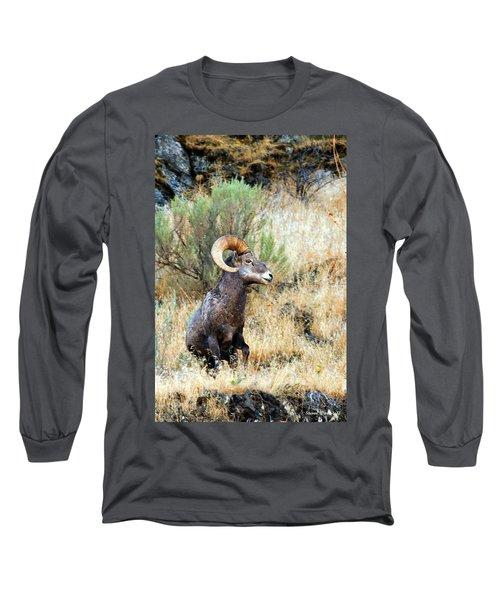Loner Iv Long Sleeve T-Shirt